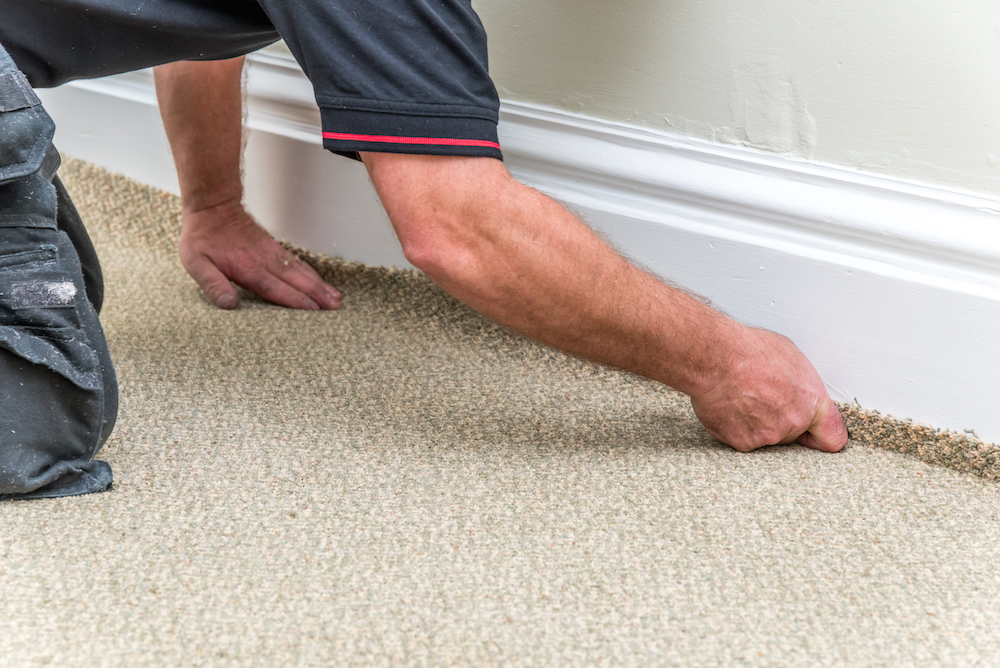 How to maintain a carpet